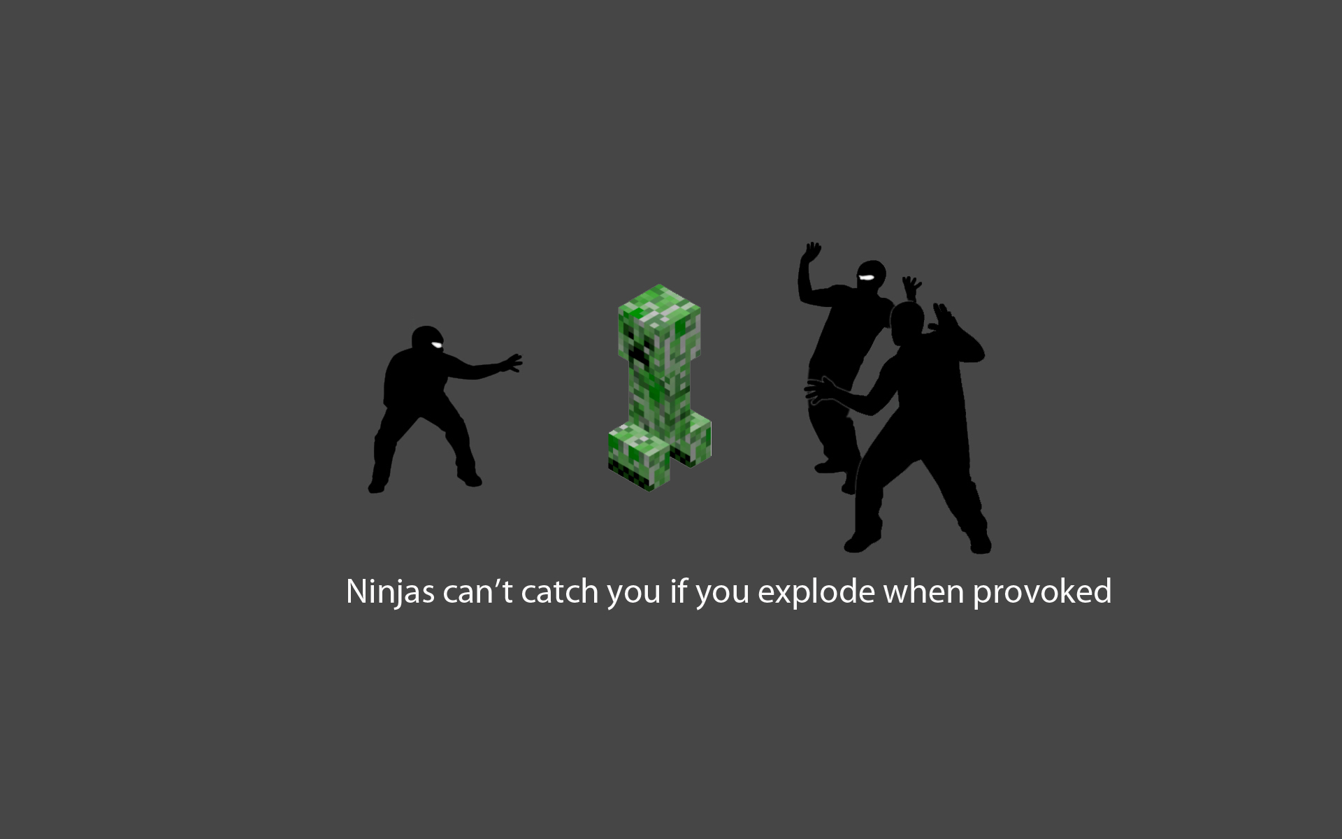 Ninjas cant catch you if minecraft wallpaper 1920x1200 8960 1920x1200