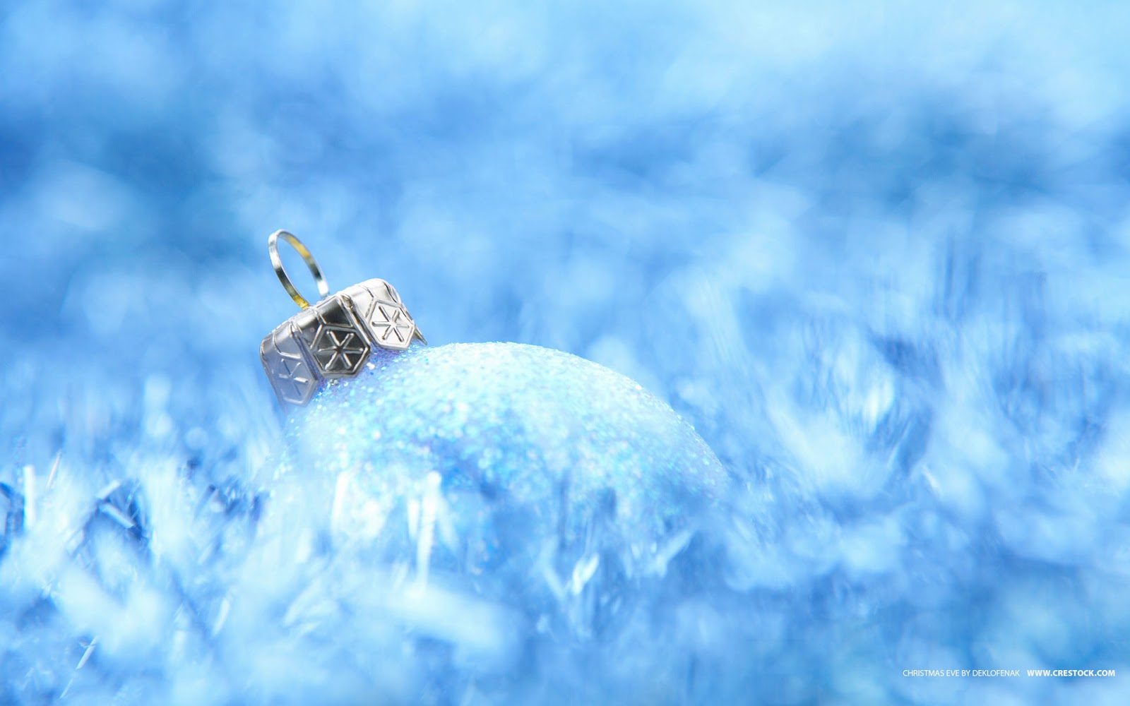Wallpapers Snow Theme Merry Christmas Backgrounds Wallpapers 1600x1000