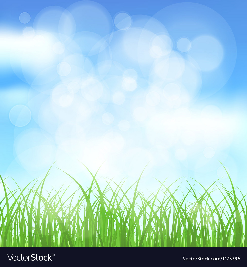 Natural spring background Royalty Vector Image 1000x1080