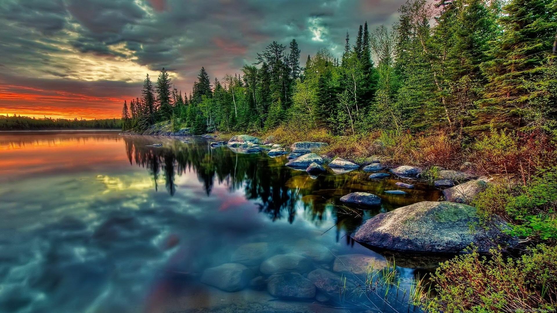 Nature Full HD Wallpaper