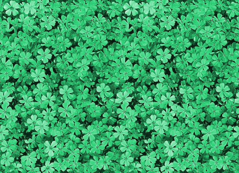pretty green backgrounds wallpapersafari