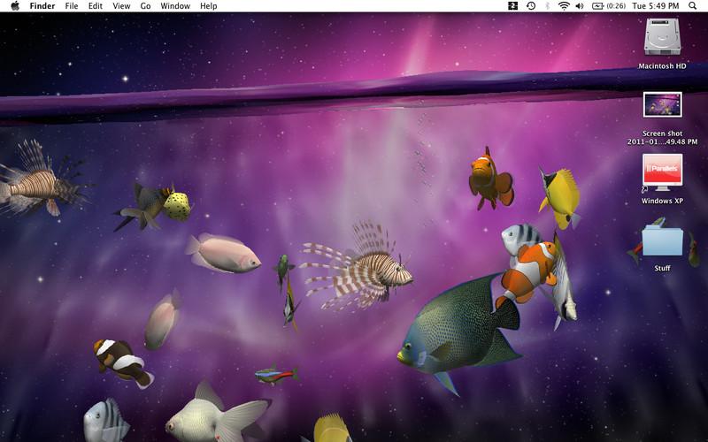 LIVE Wallpaper ScreenSaver 19 Desktop Aquarium 3D LIVE Wallpaper 800x500