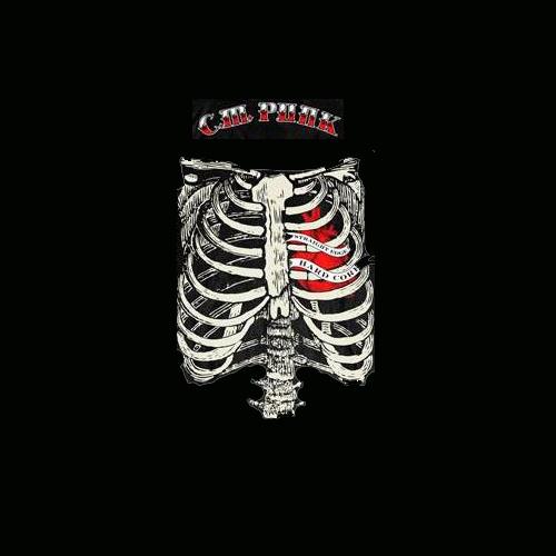 CM Punk by Dark AngeL 21 500x500
