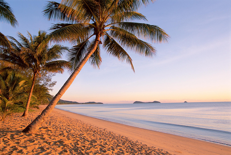 Beach Sand Wallpaper 3000x2012 Beach Sand Palm Trees 3000x2012