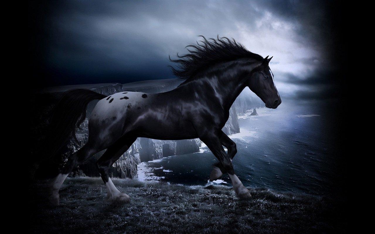 Horse Horses Live WALLPAPER Amazones Tienda Apps para Android 1280x800