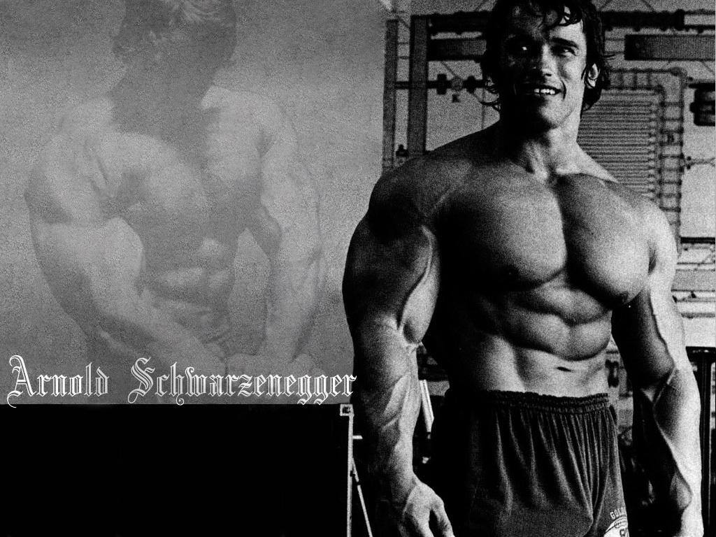 Arnold Schwarzenegger Bodybuilding Quotes Wallpaper Good Galleries 1024x768