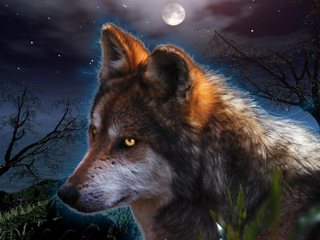 Extraordinary Fantasy Wallpapers Wolf Wallpaper DesktopHive 1024x768
