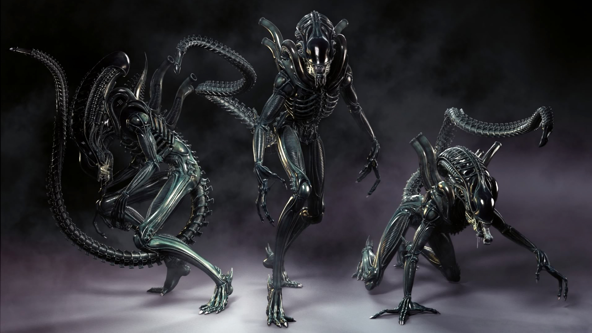 Download Xenomorph Alien Wallpaper 1920x1080 Wallpoper 1920x1080