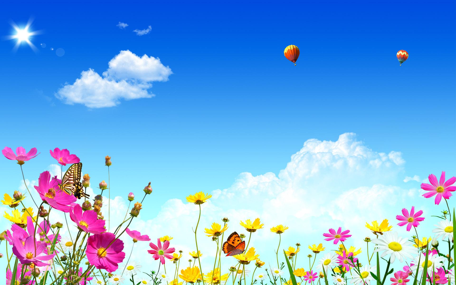 Summer Desktop Backgrounds wallpaper   505245 1920x1200