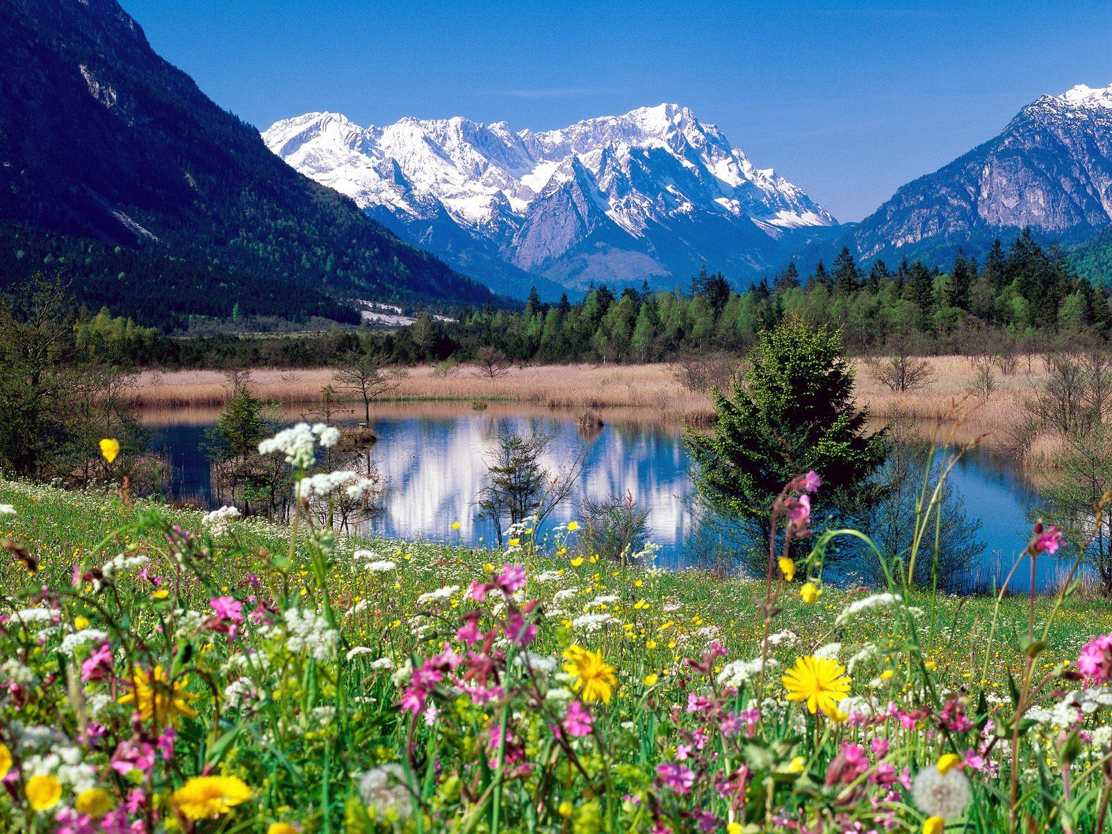 Nature Scene hd wallpaper desktop Background HD Wallpaper for 1600x1200