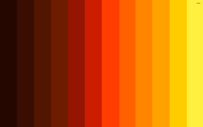 Fall Colors Wallpaper - WallpaperSafari