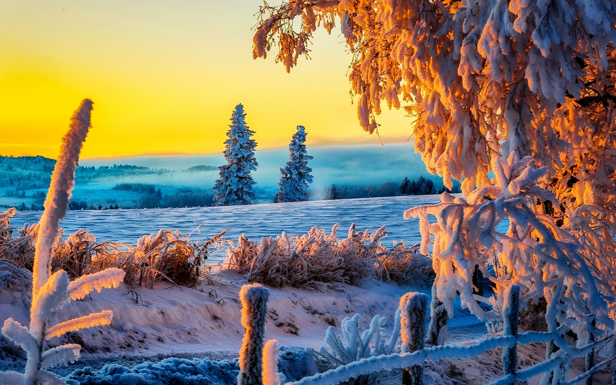 Free Download Beautiful Winter Sunrise 4k Ultra Hd Wallpaper