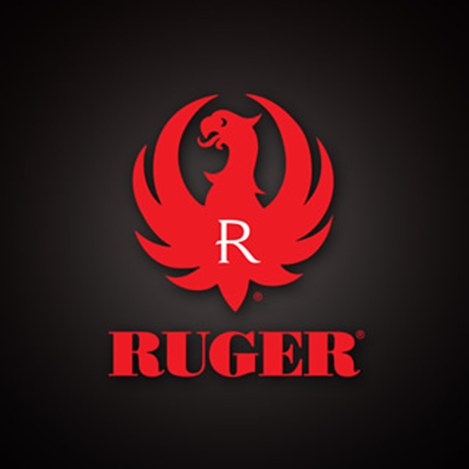 Ruger Soars in 3rd Quarter YouViewedEditorial 1500x1500