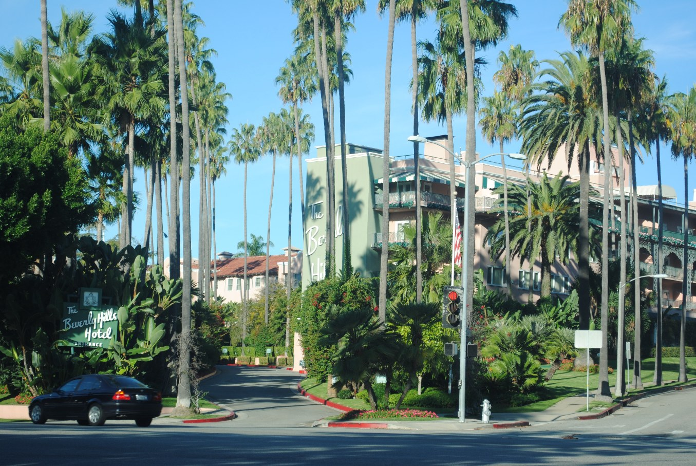 free 720p wallpapers Palm Wallpaper Beverly Hills 1355x907