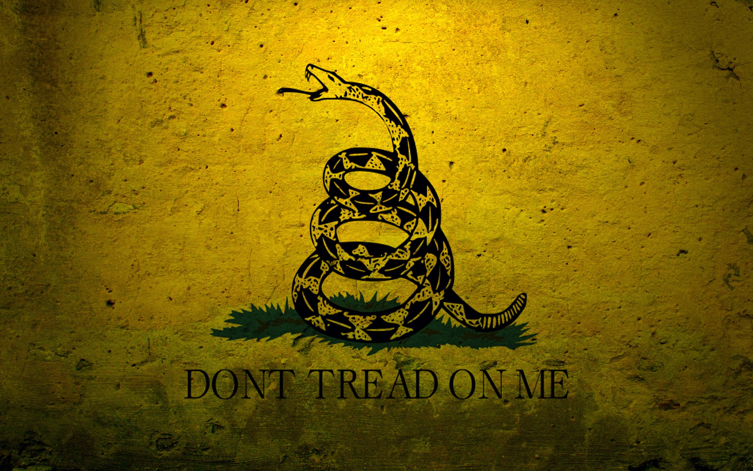 48 Don T Tread On Me Wallpaper On Wallpapersafari