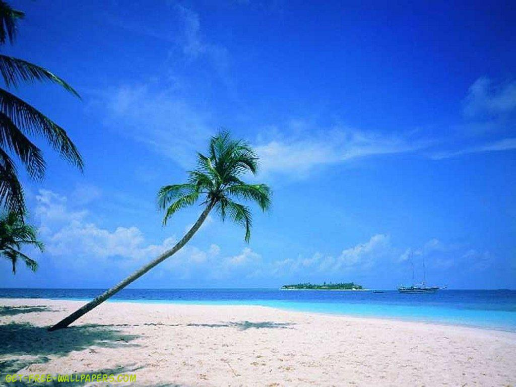 Download Beautiful Beach Scene Wallpaper 1024x768