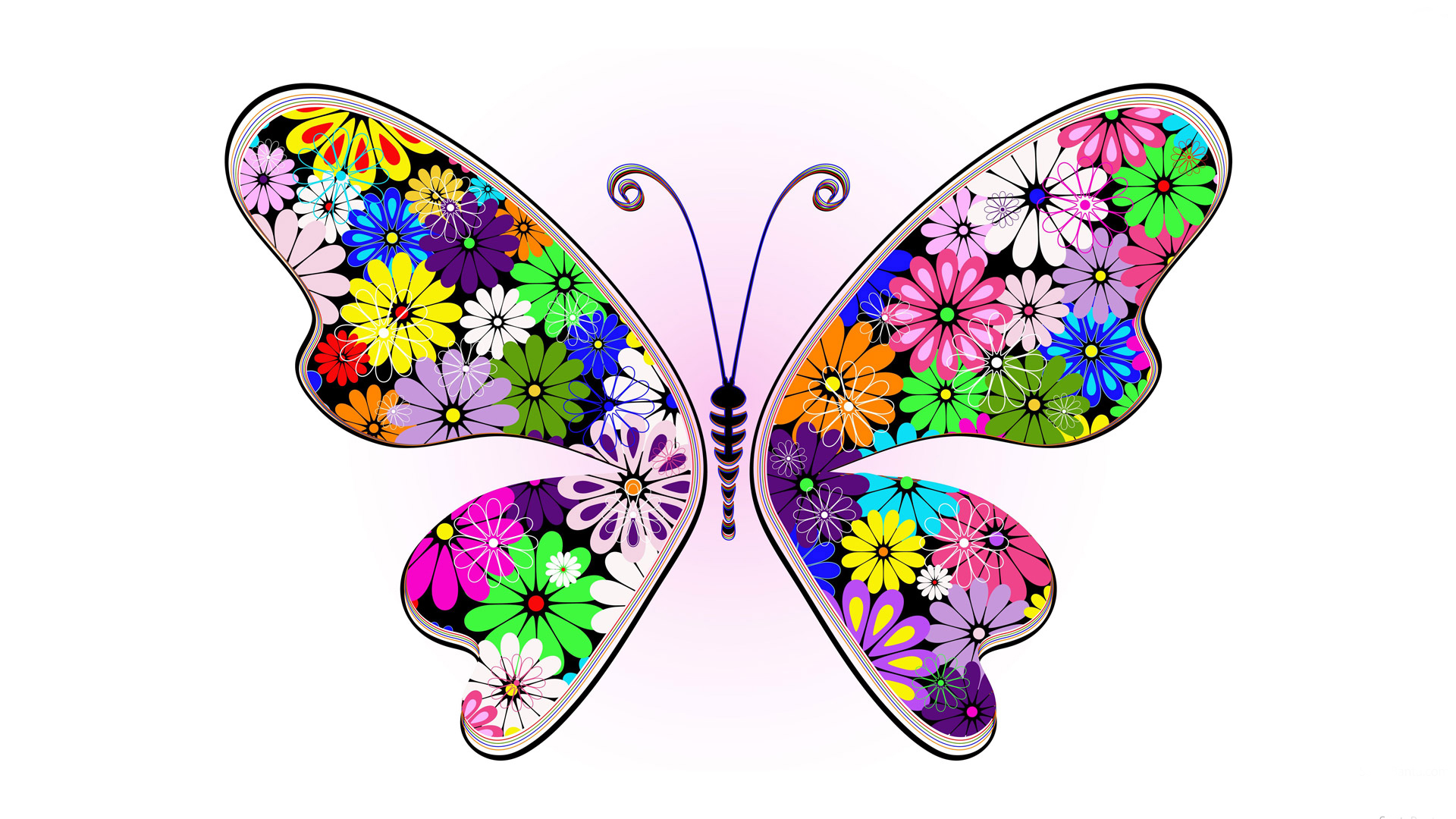 Abstract colorful butterfly hd images Only hd wallpapers 1920x1080