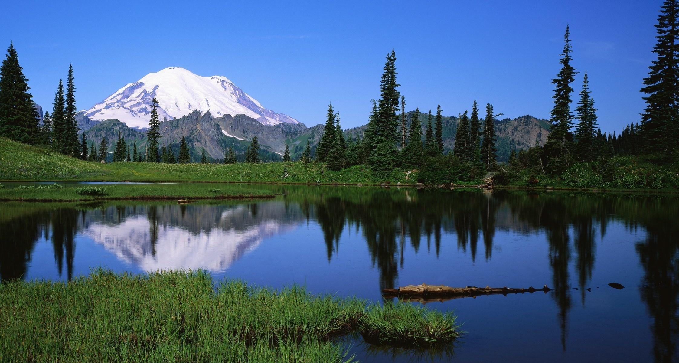 Wallpaper mount rainier national park sunrise grass mountains 2245x1200