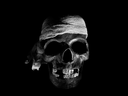 Wallpapers   Halloween Wallpapers Skull Wallpapers 500x375