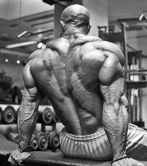 Beast Motivation Bodybuilding Motivation Just Get Started 480x543