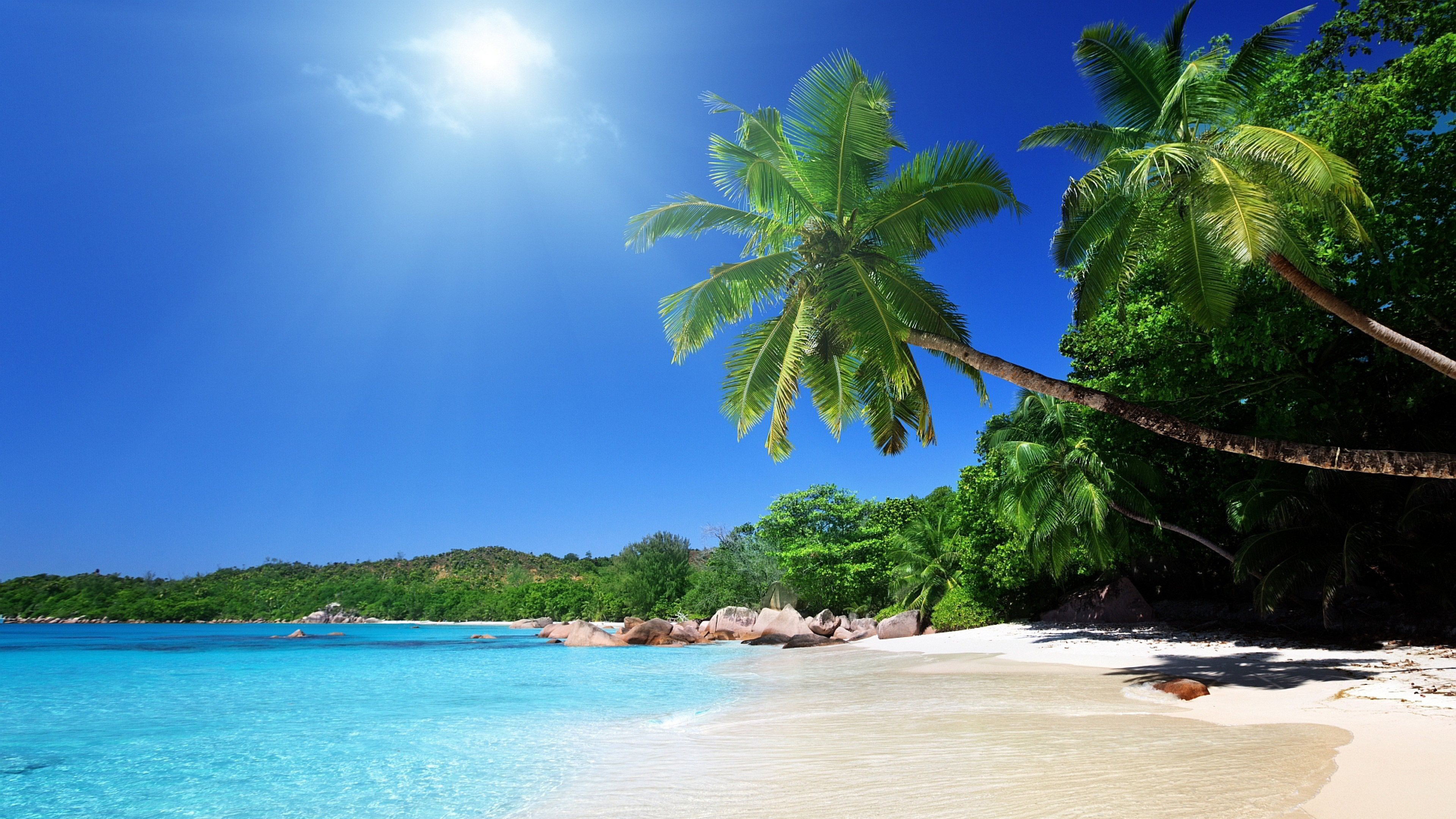 3840x2160 Beach Sand Palm trees Tropical Wallpaper Background 4K 3840x2160