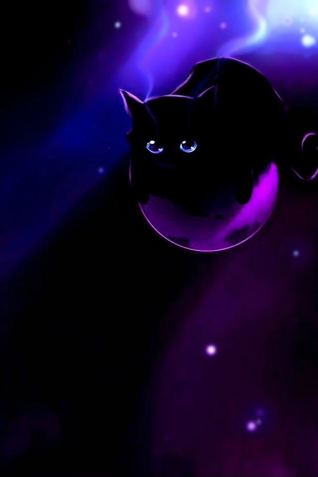 Deep purple cat iPhone wallpapers Background and Themes 640x960