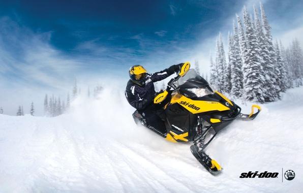 Ski doo mxz snowmobile snowmobile brp yellow snow forest 596x380