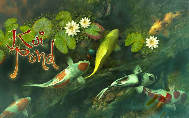 Koi pond live wallpaper desktop wallpapersafari for Koi pond screensaver