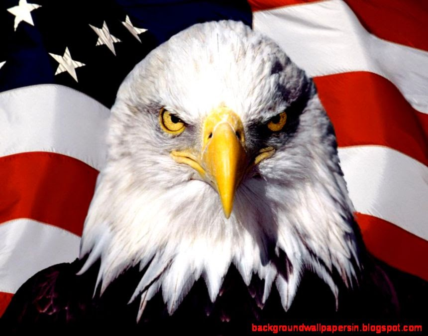 Patriotic Eagle Wallpapers Background Wallpapers 860x675