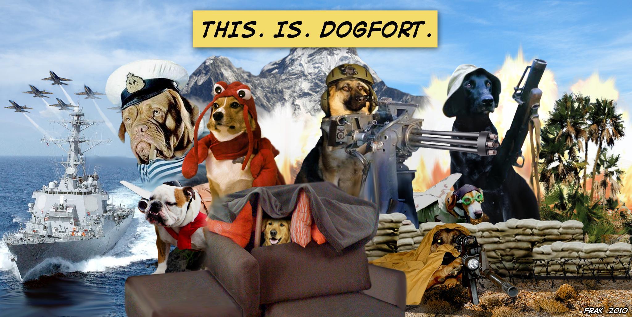 meme ftw   Dog Fort desktop wallpaper Available here 2049x1028