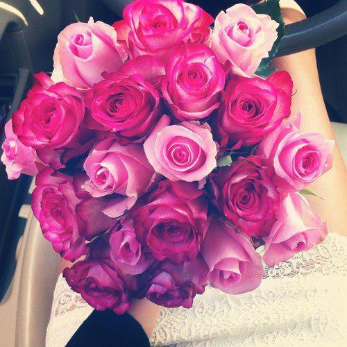 instagram pink roses   image 597954 on Favimcom 500x500