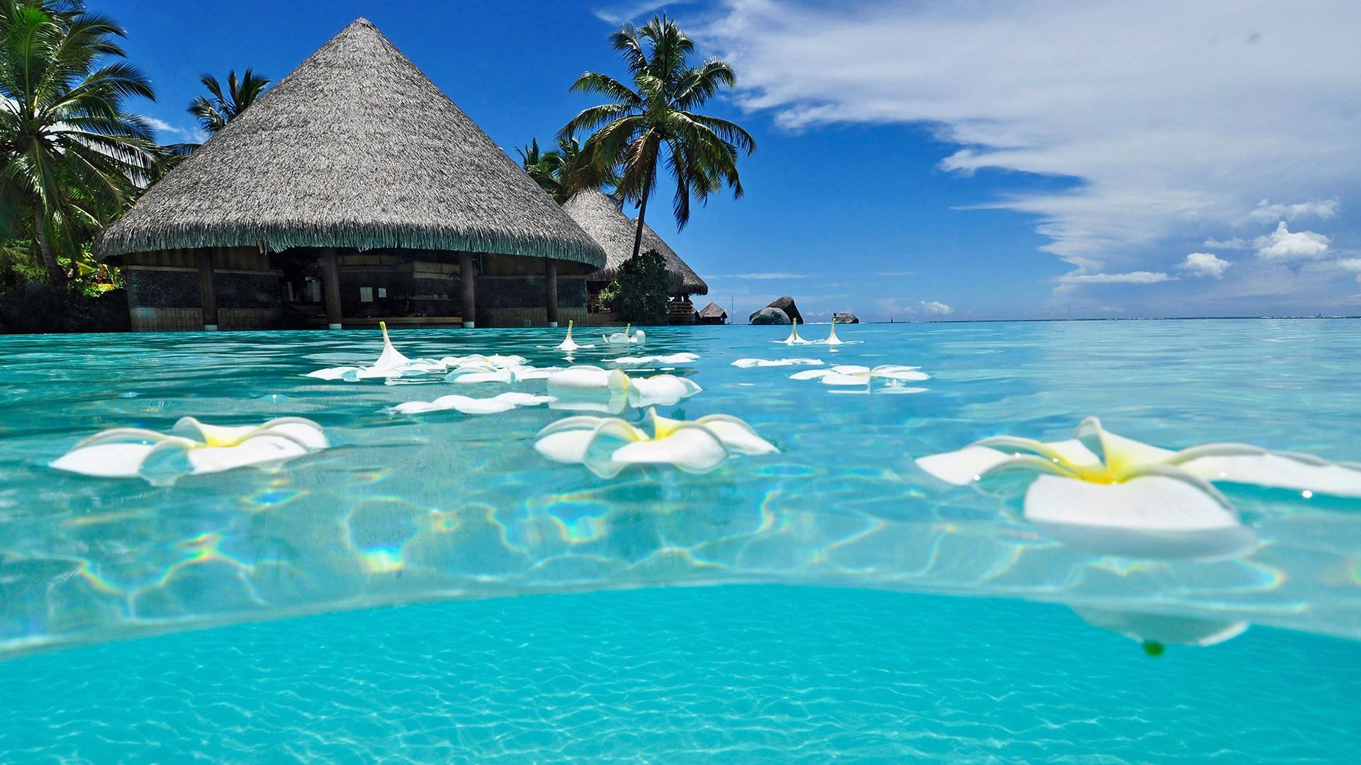 Paradise Beach Summer Wallpaper Desktop Wallpapers High Definition 1920x1080