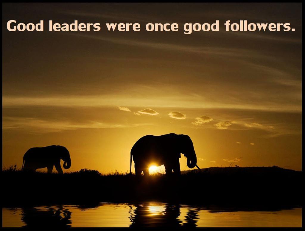 FunMozar Leadership Quotes Wallpapers 1024x775