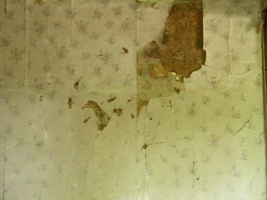 Tear wallpaper wallpapersafari - Tear off wallpaper by znak ...