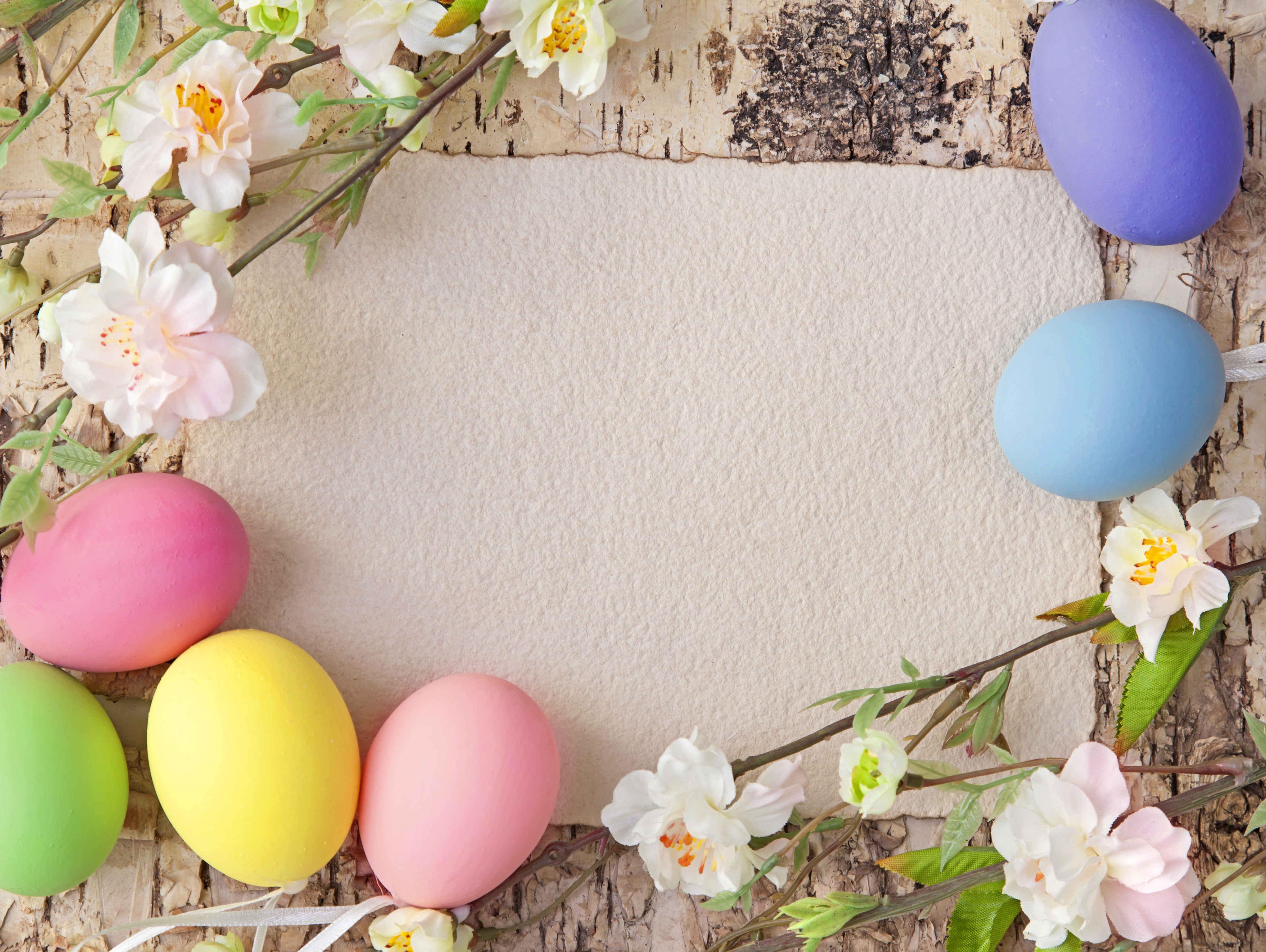 Easter Background with Eggs and Spring Branches Gallery 4500x3384