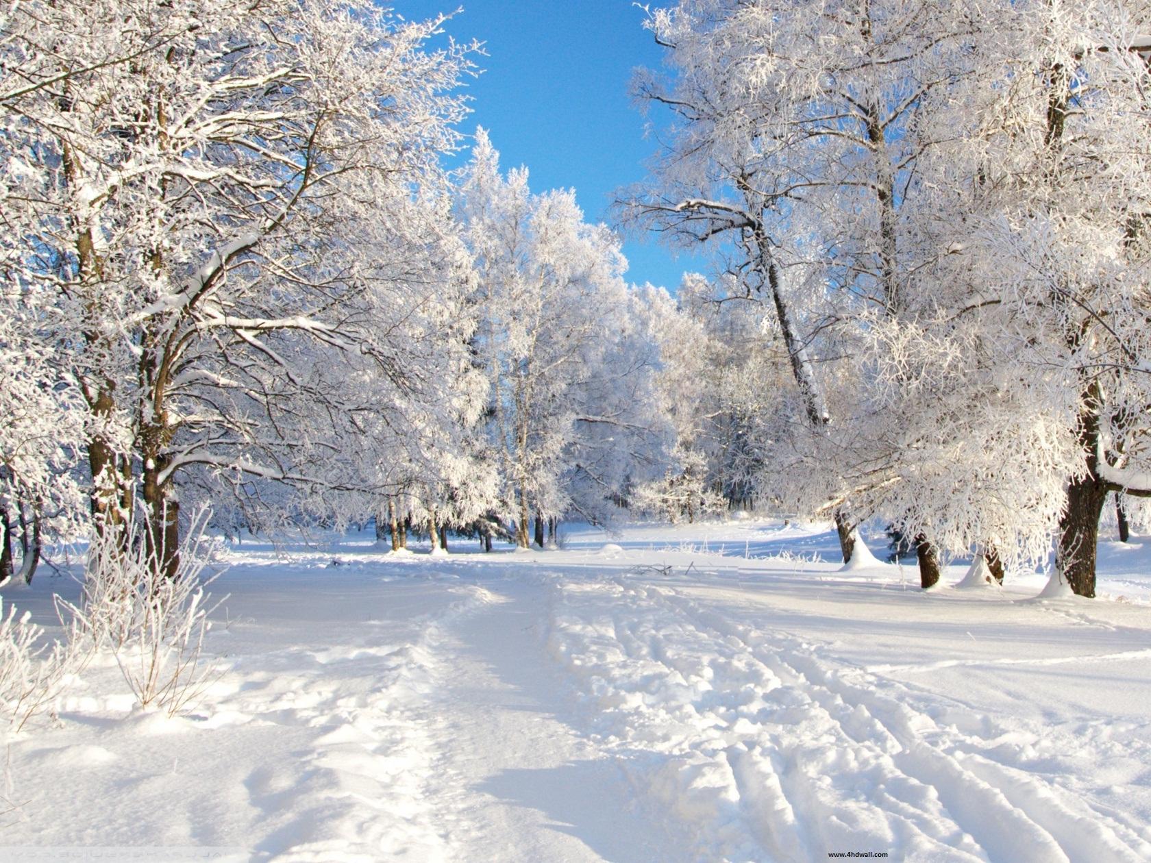 Kostenloser desktop hintergrund winter
