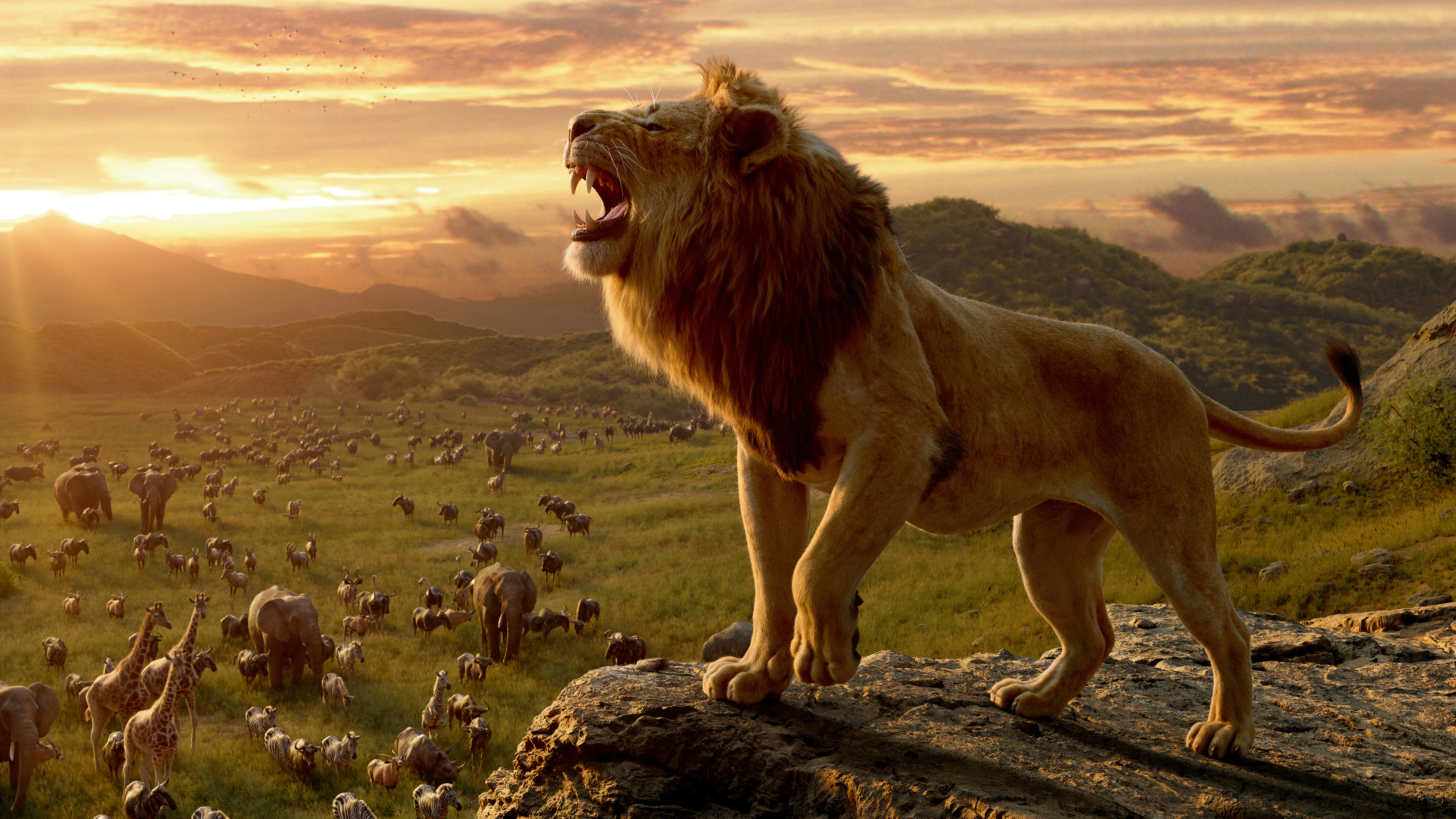 Lion King 2019 Phone Wallpaper 70 WALLPAPER 4K THE LION   Videos 3840x2160