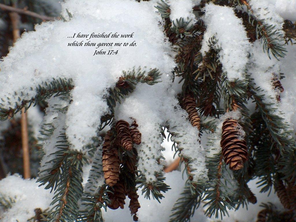 Christmas Winter Scene Wallpapers 1024x768