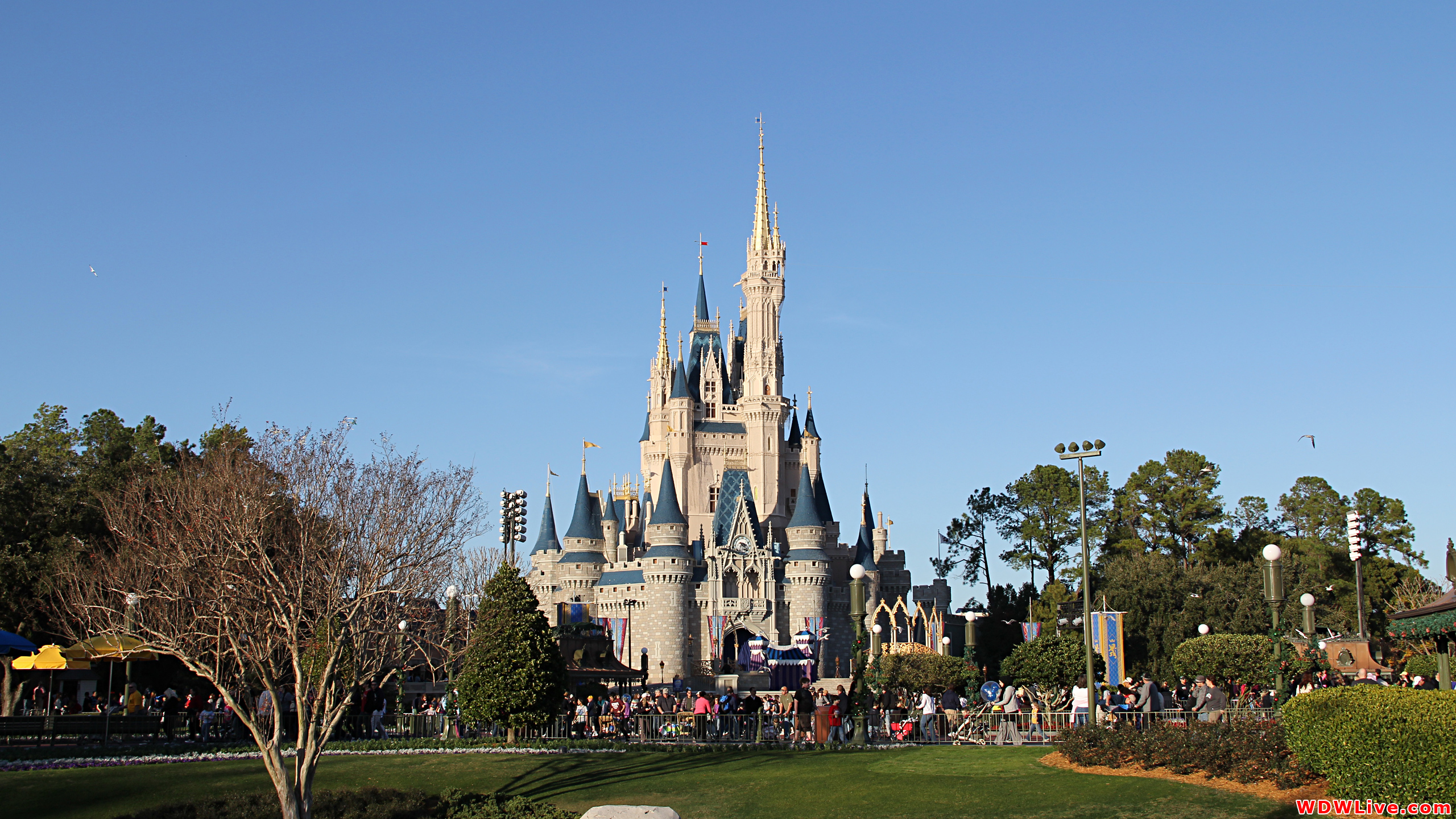 Cinderella Castle Desktop Wallpaper 2560x1440 2560x1440
