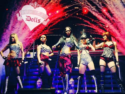 The Pussycat Dolls Wallpaper 9610777 500x375