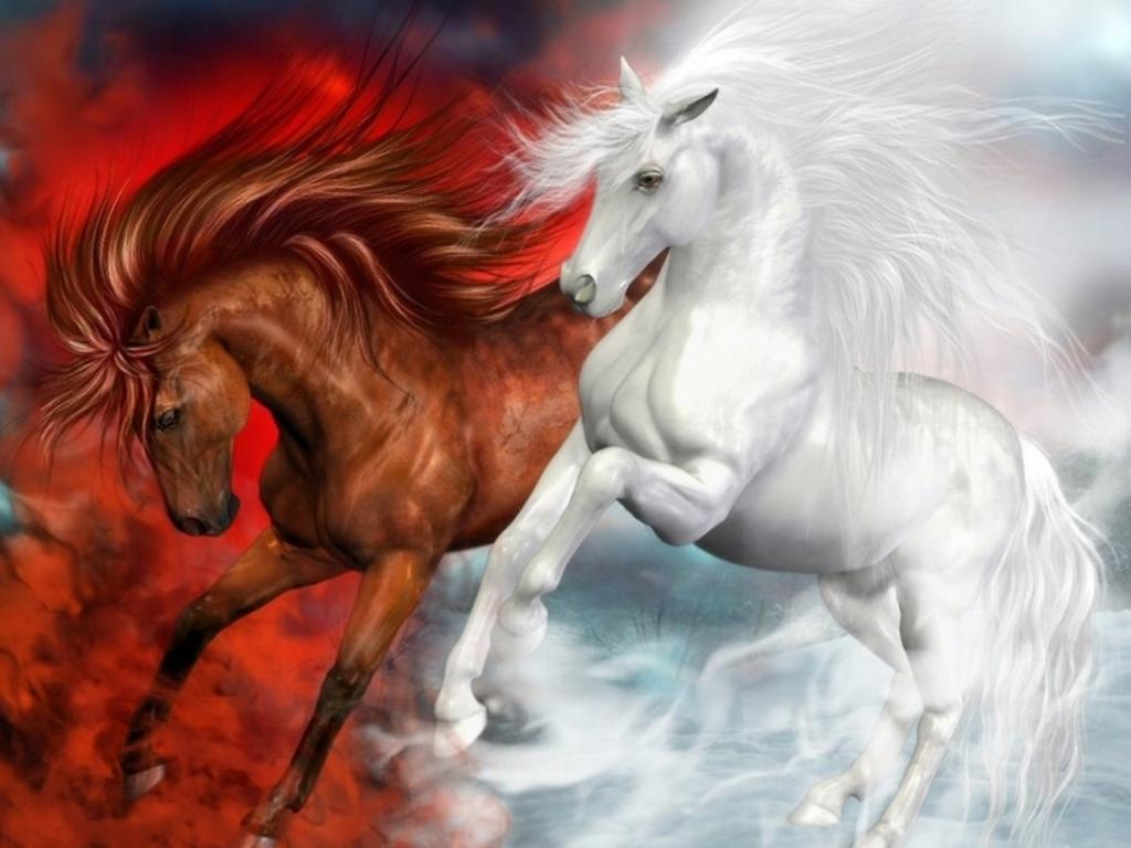 Download Beautiful Horses Wallpaper 1024x768 Full HD Wallpapers 1024x768