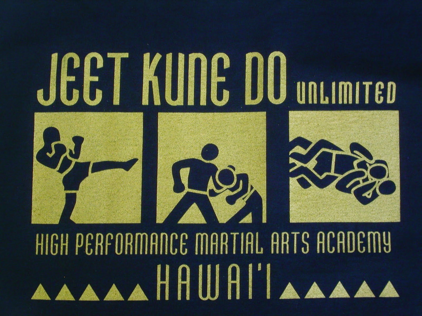 A Gent in Training JKD MMA CQC A Post About Martial Arts 1600x1200