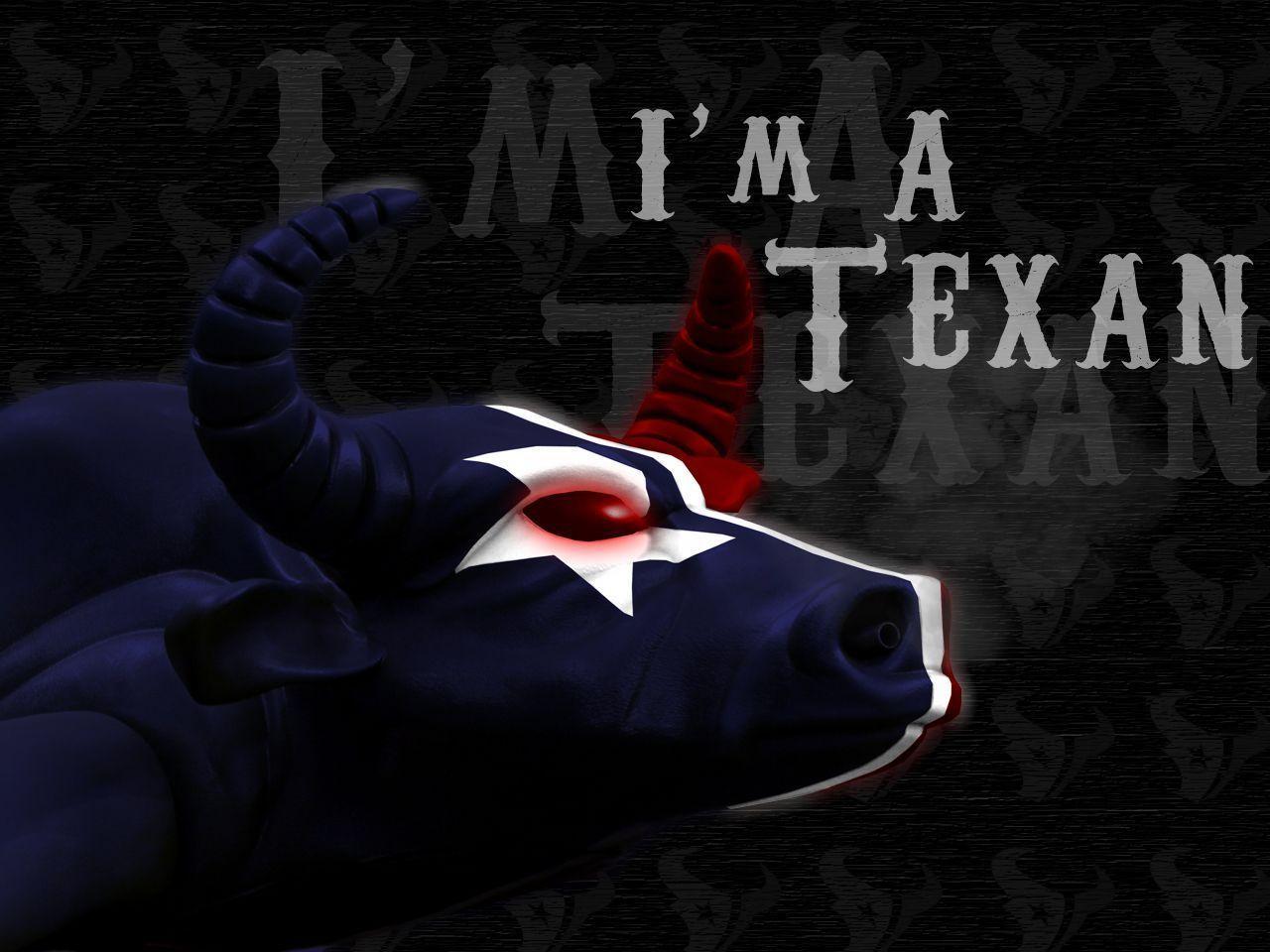 Houston Texans Wallpapers 2016 1280x960