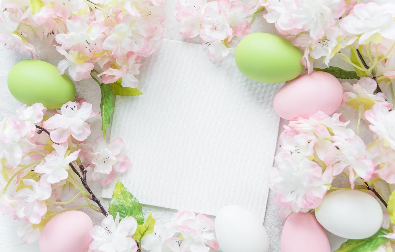 Wallpaper flowers Easter flowers spring Easter eggs Happy 1332x850