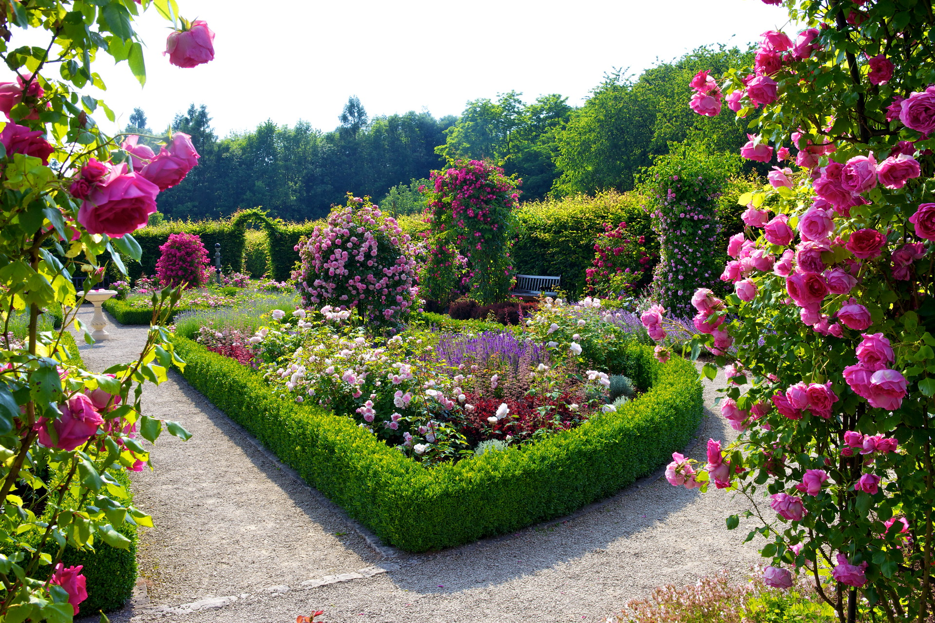 Flower Garden Wallpaper Related Keywords amp Suggestions 1920x1280