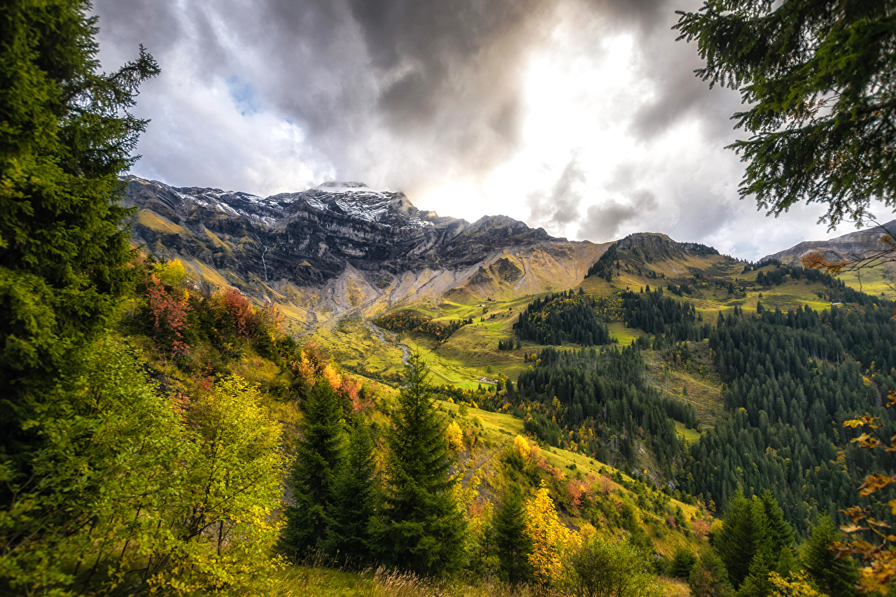 Images Switzerland Interlaken Oberhasli Nature Spruce Autumn 1280x853