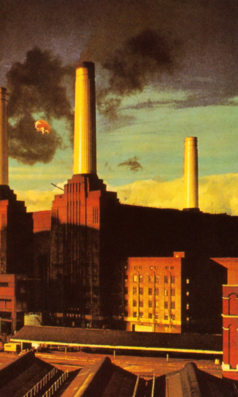 Pink Floyd   Animals Album Cover Wallpaper for Nokia Lumia 520 480x800