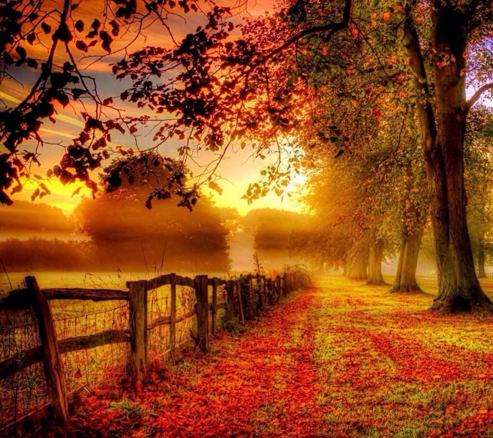 Fall Country Scenes Wallpaper