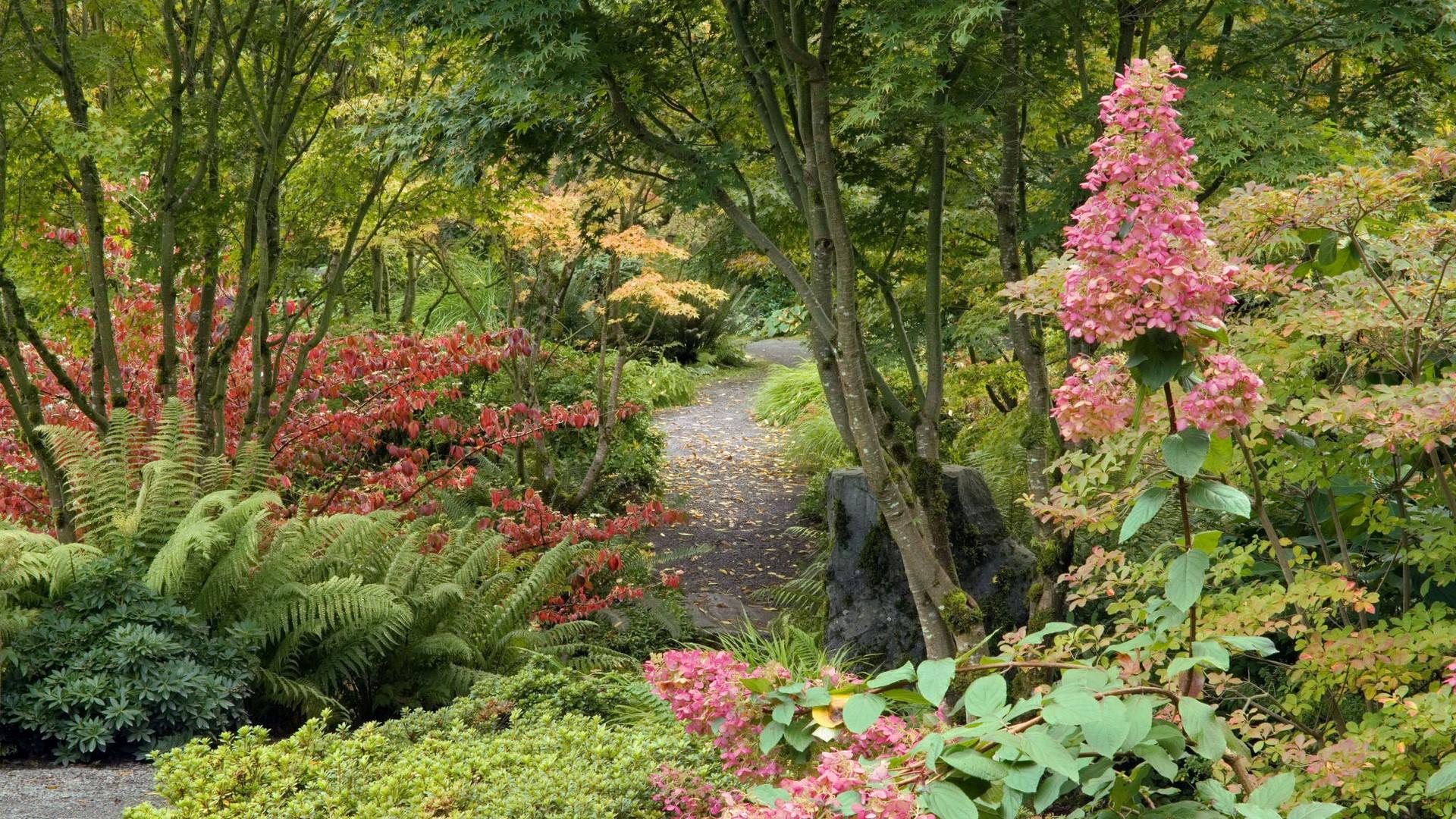 Beautiful HD Garden Image Download HD Wallpapers 1920x1080