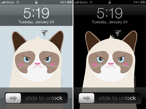the Grumpy Cat iPhone and Galaxy SIII wallpaper WEDGIENETNET 500x373